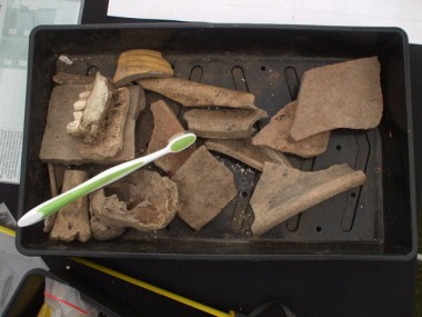 Sorted finds at the Festival of British Archaeology